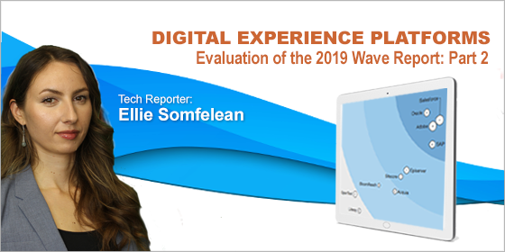 CMSC Media Examines: The Forrester Wave DXP Q3 2019 — Part 2