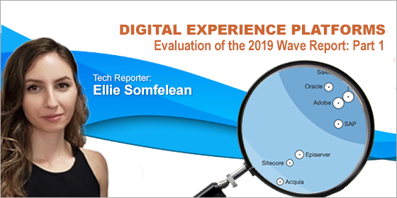CMSC Media Examines: The Forrester Wave DXP Q3 2019—Part 1