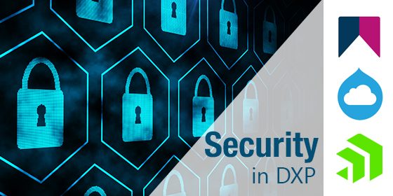 A Look into DXP and Security